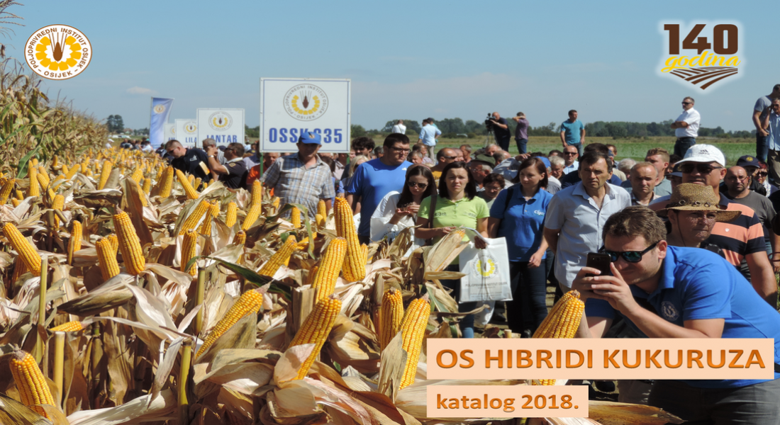 Catalogue of OS Maize Hybrids 2018